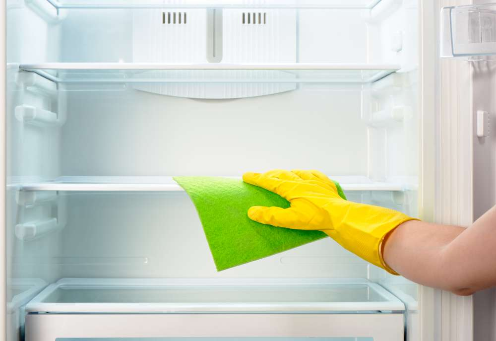Domestic Cleaning (5)